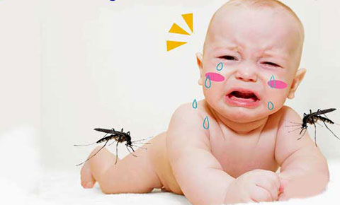 Signs of a child with dengue fever?  The right way to take care of your baby